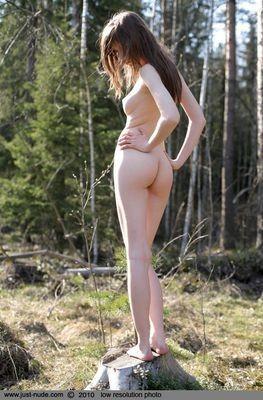 prostituée Montauban-de-Bretagne